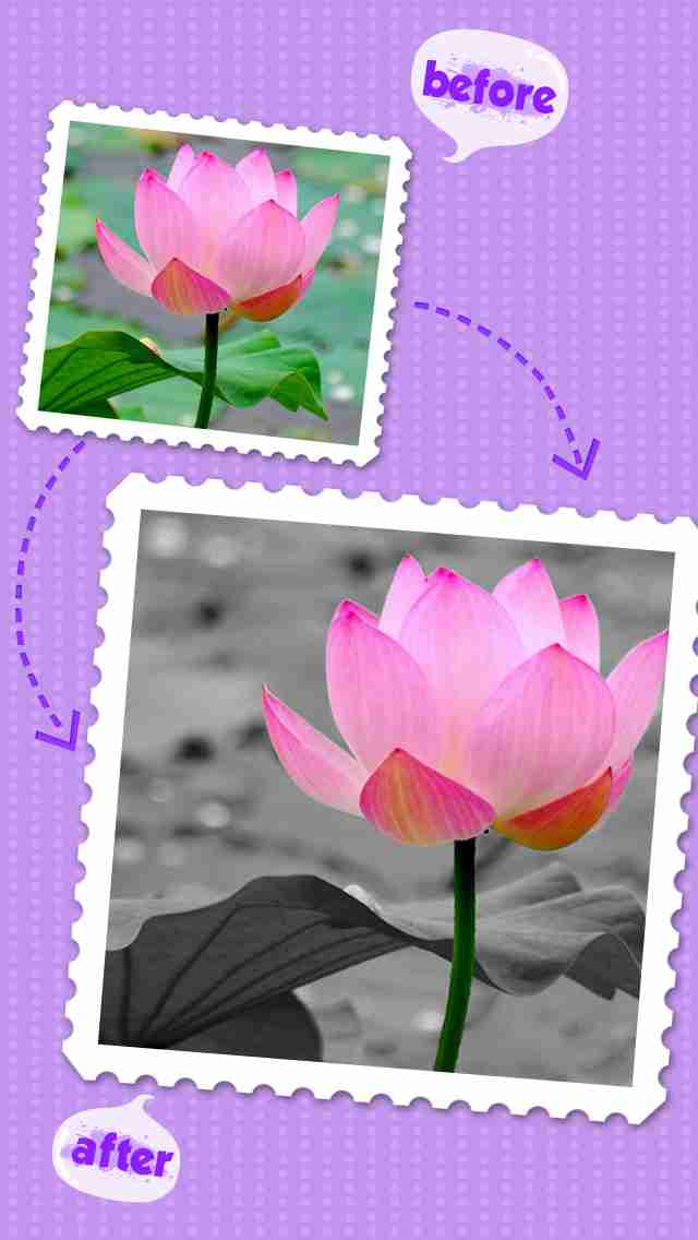 Color Editor - Insta Photo Recolor &Picture Backgrounds Effects Eraserのスクリーンショット - 2