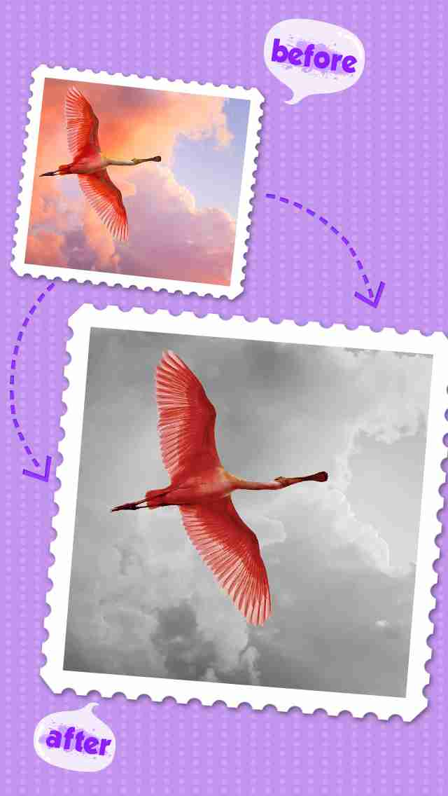 Color Editor - Insta Photo Recolor &Picture Backgrounds Effects Eraserのスクリーンショット - 8